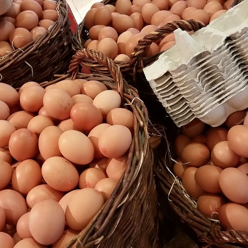 FuelIgniteThrive - Are You Chicken When it Comes to Eggs?