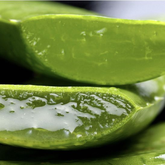 FuelIgniteThrive - ALOE VERA - Not Just for Sunburns